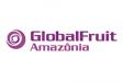 _0000s_0005_global-fruit